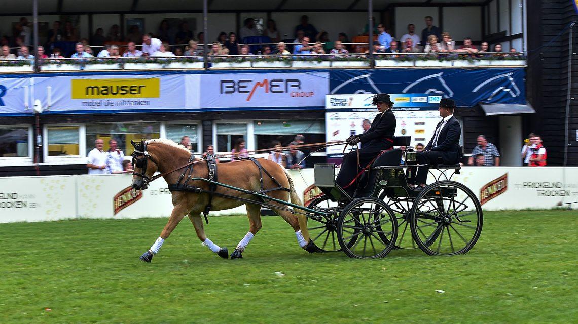 Wiesbadener PferdeNacht in Bildern