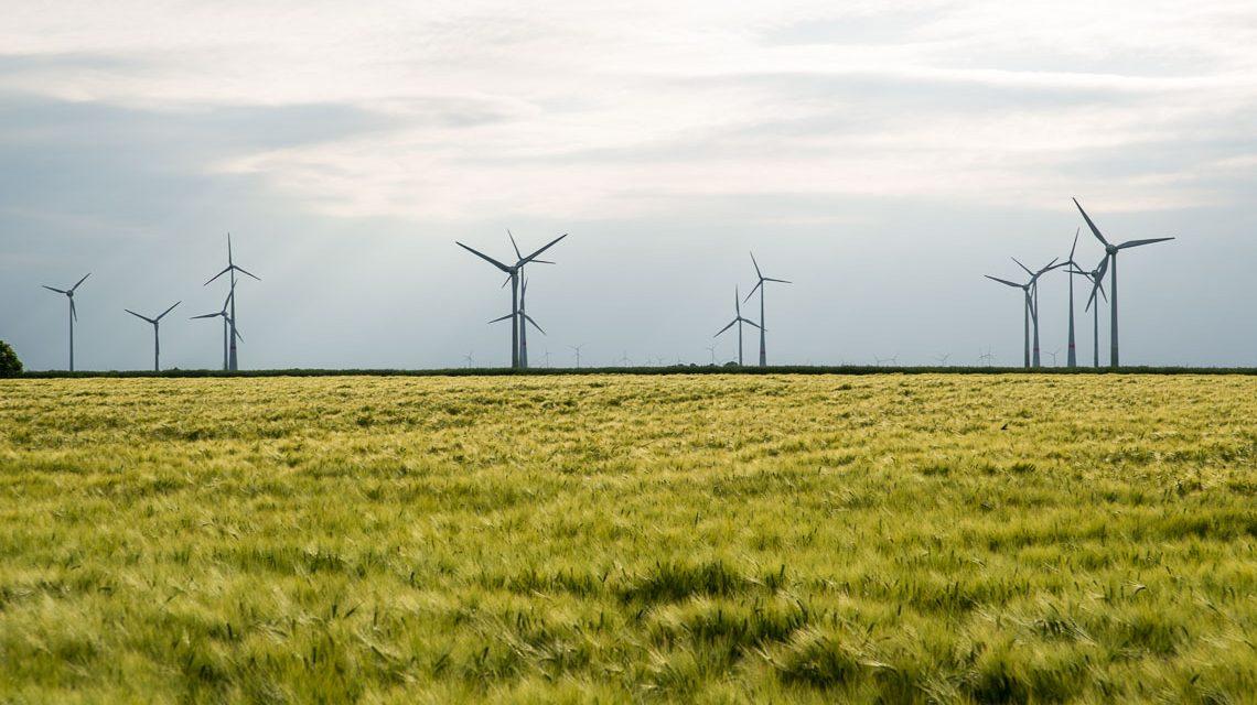 Windenergie irgendwo zwischen Hannover und Hamburg. Bild: Volker Watschounek
