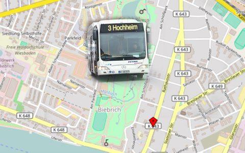 Die Rathausstraße wird neu geteert, die Busse werden umgeleitet. Bild: Volker Watschounek / Open Street