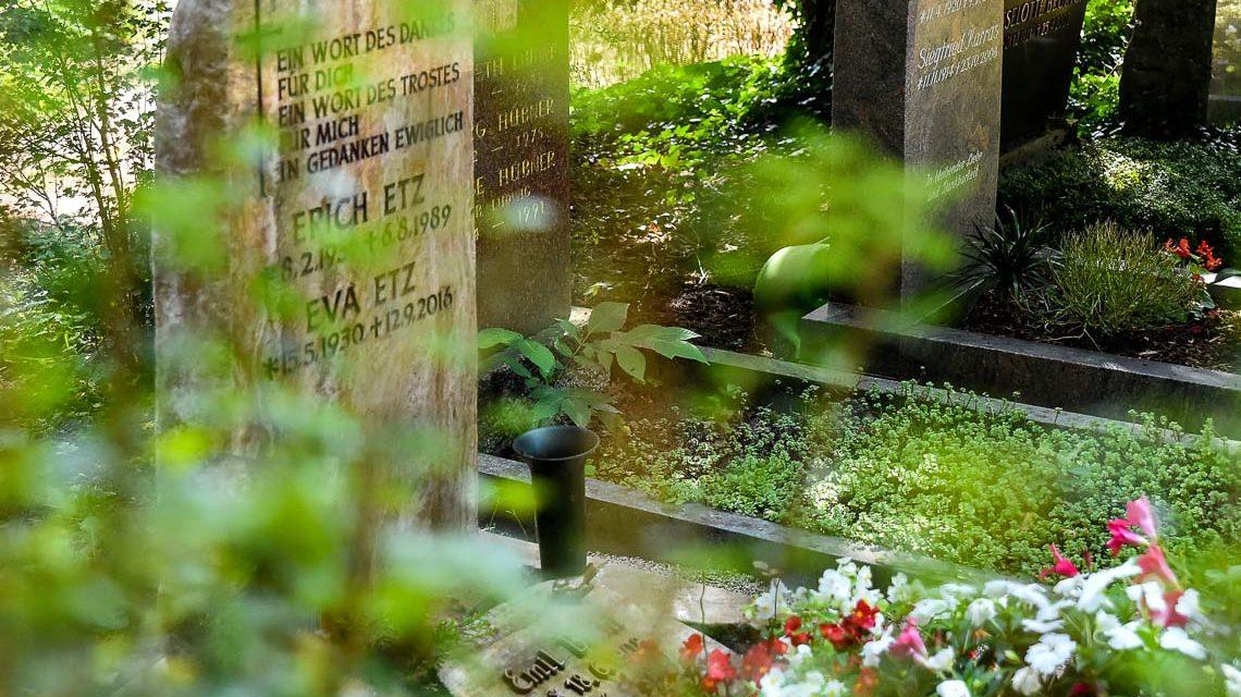 Grabfeld auf dem Wiesbadener Nordfriedhof. Bild: Volker Watschounek