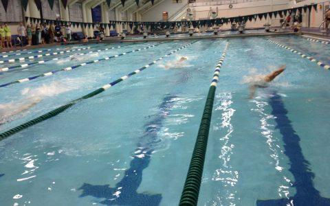 Archivbild: Schwimmwettbewerb. ©2017 Charles Smith / Flickr