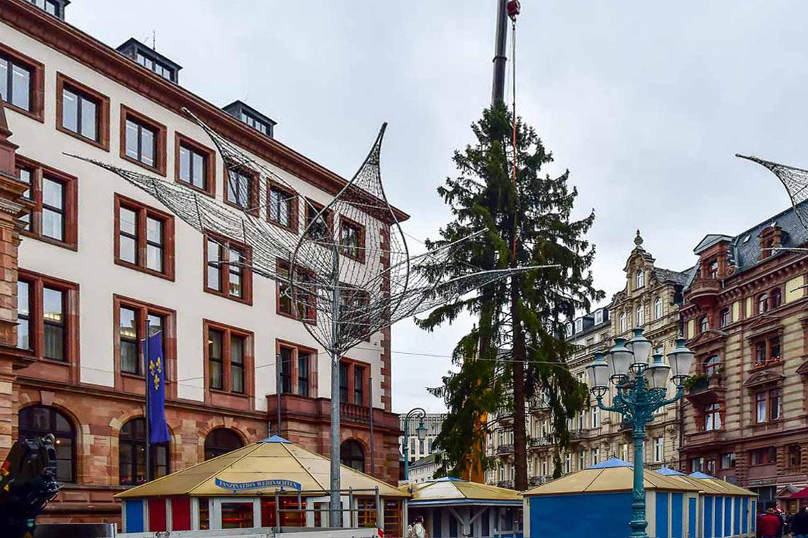 Weihnachtsbaum sternschnuppenmarkt wiesbaden