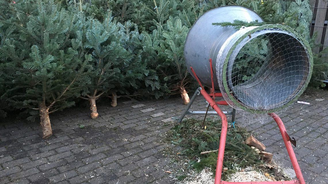 Tannenbaum Selber Schlagen Düsseldorf.Weihnachtsbaum Verkauf In Wiesbaden Wiesbaden Lebt