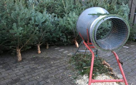 Weihnachtsbaum-Verkauf klassisch: Die Bäume stehen aneinandergereiht und warten darauf, verschnürt zu werden. ©2017 Heike Verch / Flickr