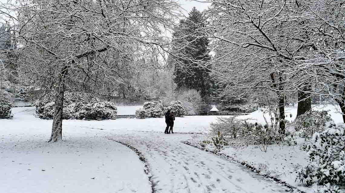 Zauberhafter 1. Advent: Rodeln oder Spazieren gehen?
