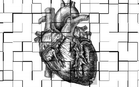 Die Koronare Herzerkrankung, Herzschwäche und Vorhofflimmern lassen sich in vielen Fällen durch einen gesunden Lebensstil verhindern.