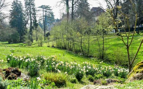 Im Frühling ein beliebtes Ausflugsziel: Das Nerotal. ©2017 Volker Watschounek
