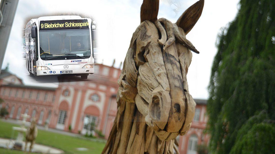 Busverkehr während des Pfingstturniers. ©2018 Volker Watschounek