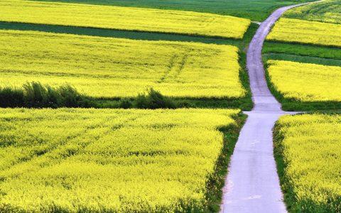 Feld und Wiesenwege, kreuzwegse – nur eingeschränkt zu befahren. ©2018 Andreas Hermsdorf / pixelio.de