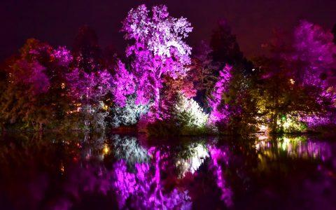 """Blick 3: """"Lassen Sie den Blick über den Kurhausweiher schweifen und genießen Sie das eindrucksvolle Farbenspiel."""" Foto: Volker Watschounek"""