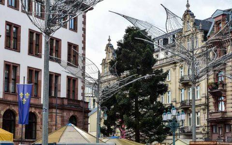 Der Wiesbadener Weihachtsbaum steht. Wie die vergangenen Jahre schon wurde er nicht heimlich in der Nacht, sondern im Rahmen einer kleinen Feier aufgestellt – und wird jetzt bis zum Start des Sternschnuppenmarktes hergerichtet. ©2018 Volker Watschounek