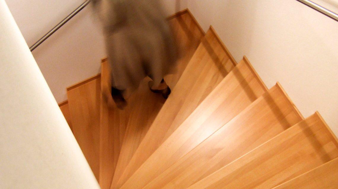 Person stolpert und fallen Treppen hinunter. ©2019 Rainer Sturm / pixelio.de