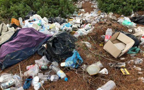 Abfall im Wald ©2019 Alexander Hauk | www.alexander-hauk.de | pixelio.de